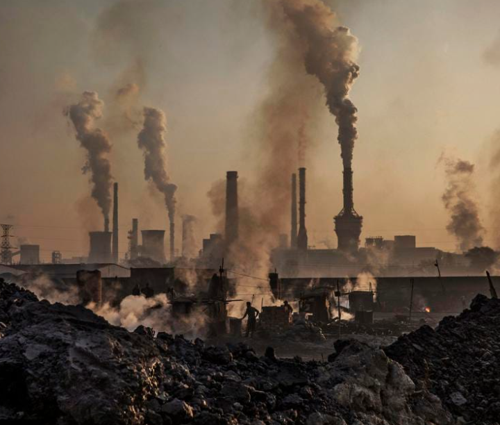 Record drop in carbon emissions